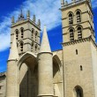 Saint Pierre Cathedral , Montpellier, France — Stock Photo #51969027