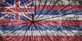 Flag of the Hawai — Stock Photo
