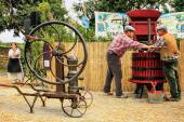 Traditional Wine Pressing — Foto Stock