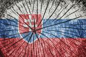 斯洛伐克的旗子 — 图库照片