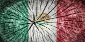 флаг мексики — Стоковое фото