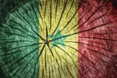 Bandeira do senegal — Foto Stock