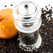 Upper of Glass pepper Grinder and fresh onion  — Stock Photo #52338909