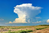 Cumulonimbus cloud — Stock Photo