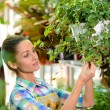 Florists — Stock Photo #57303037