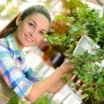 Florists — Stock Photo #57303057