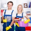 Cleaning — Stock Photo #58790345
