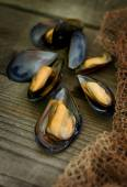 Baked Black Sea mussels. — Stock Photo