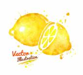 Watercolor lemons with paint splashes — Stock Vector