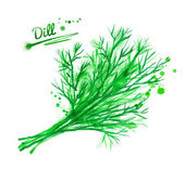 Dill with paint splashes — Stock Photo