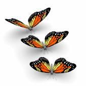 3d butterflies — Stock Photo
