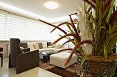 Contemporary living room — Stock Photo