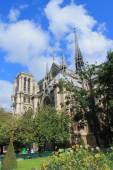 Cathedral Notre Dame in Paris, France — Stock Photo