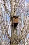 Little bird nest house — Stock Photo