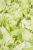 Sliced iceberg salad — Stock Photo
