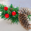 Christmas branch and pine cones on the snow — Stock Photo #60417695