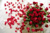 Red roses for your love — Stock Photo