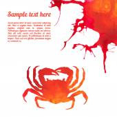 Vector card template with watercolor crab. — Stock Vector