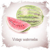 Vintage card with watermelon. — Stock Vector