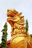 Leo of temple2 — Foto de Stock