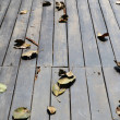Dry leaves on wooden floor — Stock Photo #56284883