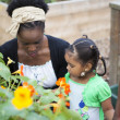 Mother outdoors showing little daughters garden — Stock Photo #56163665