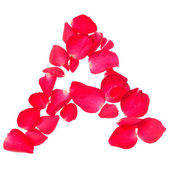 Consonant of rose petals isolated on white background — Stock Photo