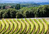 Tuscany panorama — Stock Photo