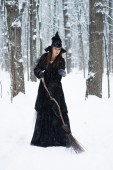 Woman in witch's hat holding broom in winter forest — Stock Photo