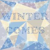Winter time card background on the soft colored triangles polygo — Stock Vector