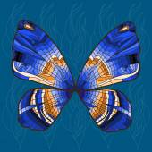 Bright background with bright decorative hand - drawn butterfly — Stockvector