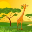 Giraffe eating leaves in Africa at sunset — Stock Vector #52785345