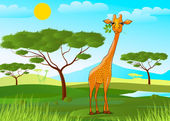 Giraffe eating leaves in Africa at sunset — Vector de stock