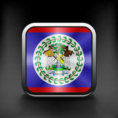 Square icon with flag of belize with reflection — Stock Vector