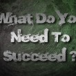 What Do You Need To Succeed Concept — Stock Photo #56226755