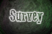 Survey Concept — Stock Photo