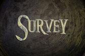 Survey Concept — Стоковое фото