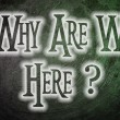 Why Are We Here? — Stock Photo #56350957