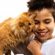 Boy and cat — Stock Photo #67158473