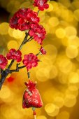 Chinese new year's decoration — Foto de Stock