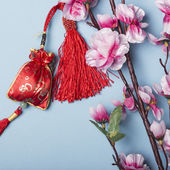 Chinese new year's decoration — Stock Photo