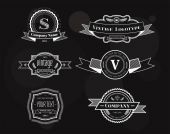 Hipster vector vintage logo elements set — Stock Vector