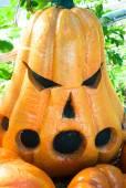 Halloween Pumpkin . — Foto Stock