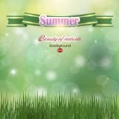 Abstract summer background. Summer. Green . — Stock vektor