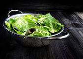 Pan with a green salad on wooden boards — Stock Photo