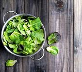 Pan with a green salad — Stock Photo