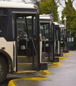 Buses — Stockfoto