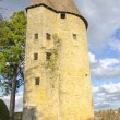 Постер, плакат: Tower Of Charle le Temeraire Charolles burgundy France saone