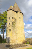 Tower Of Charle le Temeraire, Charolles, burgundy, France, saone — Stock Photo