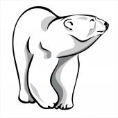 Polar bear 2 — Stock Vector